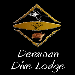 Derawan Dive Lodge & Tasik Divers Derawan